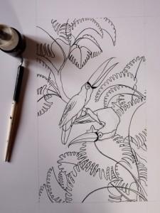 Toucans, tracé des contours (Lise Lalève)