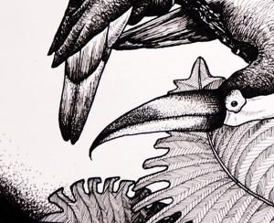 Toucans, détail (Lise Lalève)