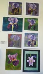 exposition juin 2016 : fleurs